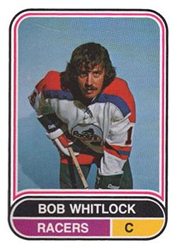 93 INDI Bob Whitlock
